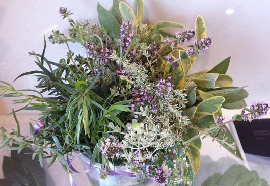 Sylvia's Kitchen Garden Herbs