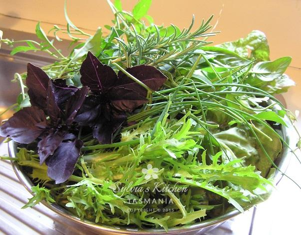 Summer Lettuce and Herbs